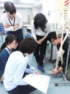 視能訓練士学科1年制 解剖生理学!