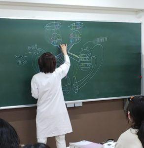 視能訓練士学科1年制 「視覚生理学Ⅰ」授業紹介