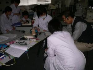 視能訓練士学科1年制 『生理光学実習』を行いました!